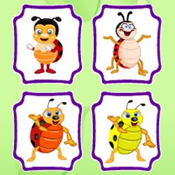 Найди одинаковых жуков